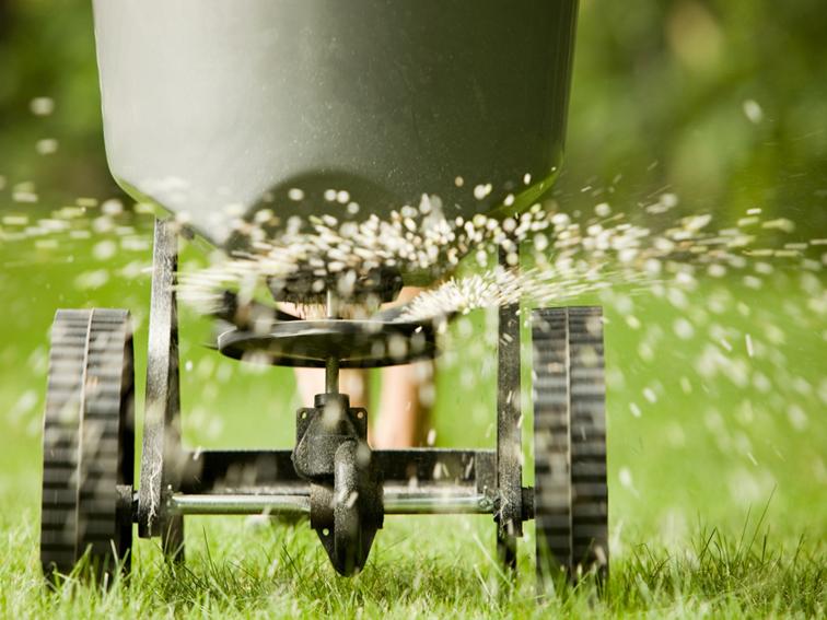 Entretien de la pelouse comment arroser tondre et faire pour un beau gazon - Chaux pour gazon ...