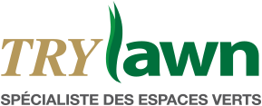 A healthy turf with lawn care, weed control, white grubs, pests and ants in Montreal, Laval