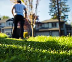 Annual lawn care plan - 25 services in 4 visits = $18.95 per month